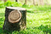 Dagenham tree stump removal services
